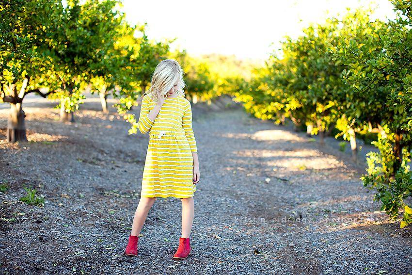 orange county lemon groves
