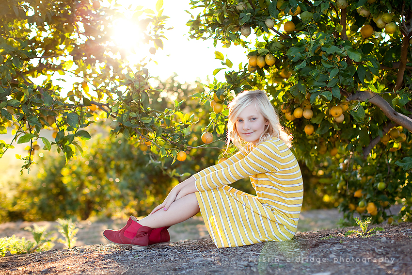 citrus trees photo sessions